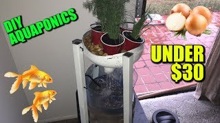 Download Reviving This Channel With Things I Actually Care About (DIY AQUAPONICS) Video