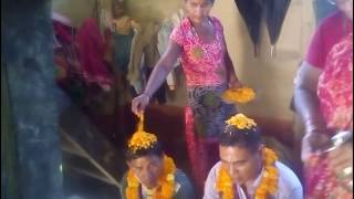 Download Tihar (Bhaitika ) Video