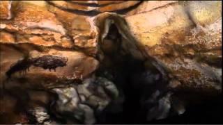 Download lascaux caves virtual tour Video