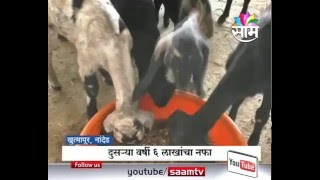 Download 8 lakhs Profit Earned by Goat farming in Nanded Video