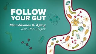 Download Follow Your Gut: Microbiomes and Aging with Rob Knight - Research on Aging Video