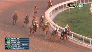 Download Arrogate wins the world's richest horse race : Pegasus World Cup 2017 Video