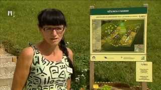 Download Ljudje in zemlja | TV Maribor 17.8.2014 Video