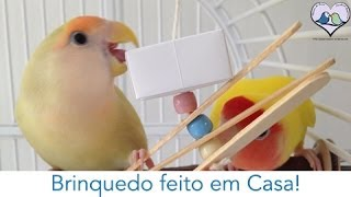Download Agapornis - Brinquedo feito em casa Video