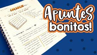Download Apuntes bonitos!! ✄ Barbs Arenas Art! Video