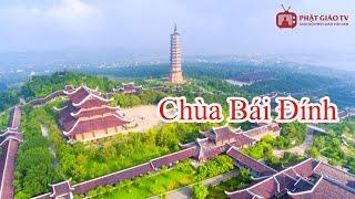 Download Chùa Bái Đính - Kỳ vĩ gôi chùa lớn nhất Đông Nam á - Đất Phật Ngàn Năm Tập 7 Video