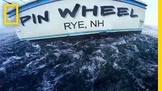 Download Tuna Tragedy | Wicked Tuna: Outer Banks Video