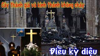 Download cháy nhà thờ Paris cây thánh giá vẫn nguyên vẹn và câu chuyện lạ thường Video