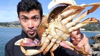 Download Catch and Cook: DELICIOUS Dungeness Crab on the Rocks!! Video