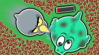 Download RHINO KILLS DRAGON WITH HORN! // LOW TIER ANIMALS KILL DRAGONS (Mope.io funny trolling) Video