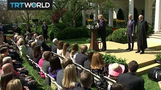 Download Trump's 100 Days: President Trump reaches his 100th day in office Video