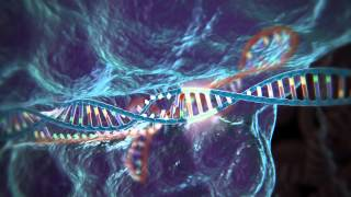 Download Genome Editing with CRISPR-Cas9 Video
