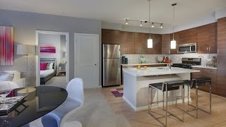 Download Cadence at Crown GoPro Tour | Two Bedroom Model Apartment Home Video