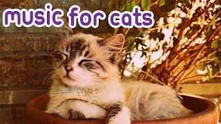 Download 15 Hour Cat Music! Special RelaxMyCat Music! 🐈🎶 Video