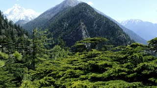 Download Harshil valley!!! ″Hidden jewel of Uttarakhand″ Video