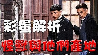 Download 【彩蛋解析】怪獸與牠們的產地|彩蛋|彩蛋解說|影評|點評|神奇動物在哪裡|萬人迷電影院Fantastic Beasts and Where to Find Them easter eggs Video
