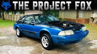 Download THE PEOPLE'S FOX - THE BIRTH OF A NEW PROJECT FOX BODY Video