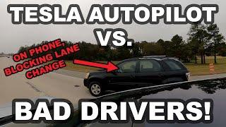 Download Tesla Autopilot vs. Bad Drivers! (GoPro MAX) Video