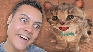 Download PLAYING KITTEN GAMES (WARNING SO CUTE !!! 🐱) Video