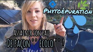 Download Création de 3 BASSINS en PHYTOÉPURATION ! Video