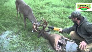 Download Broseco Ranch Locked Up Bucks Video
