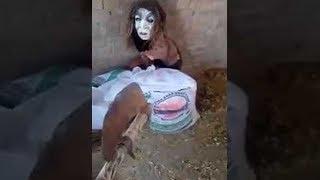 Download باكستاني استطاع أن يقبض على جن...هل فعلا جن حقيقي؟ Video
