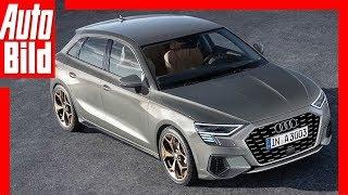 Download Zukunftsaussicht: Audi A3 Sportback (2019) Details / Erklärung Video