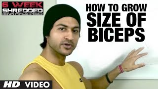 Download How To Grow Size Of Biceps | Health and Fitness Tips | Guru Mann | Workout Tips Video
