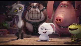 Download The Secret Life of Pets ALL MOVIE CLIPS Video