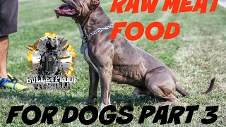 Download dog raw fed diet food PART 3 pit bull muscle bully conditioning body building Video