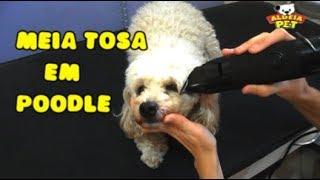 Download COMO FAZER MEIA TOSA EM POODLE Video