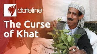 Download The Curse of Khat Video