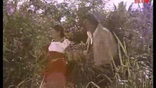 Download Mele Poomala Malayalam Song Video
