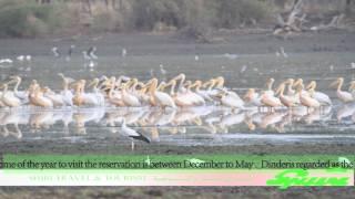 Download AL Dinder National Park Video