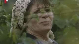Download kúpeľnový hráč -1988 ,celý film Video
