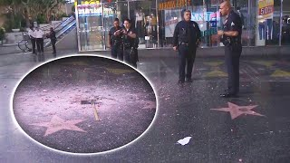 Download Donald Trump's Hollywood Walk of Fame Star Destroyed With Pickaxe Video