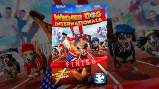 Download Wiener Dog Internationals Video