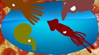 Download 790 Productions: Octopus vs Squid vs Cuttlefish vs Nautilus / Cephalopod Royale Video