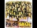 Download PÉ DE SKOL Video