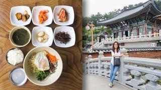Download Bibimbap near Korean Water Temple Video