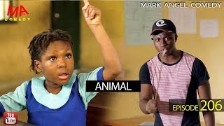 Download ANIMAL (Mark Angel Comedy) (Episode 206) Video