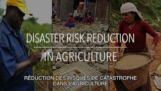 Download FAO Collection Politiques: Réduction des risques de catastrophe (sous-titrée) Video