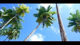 Download Family Trip To Andaman Part-1 Video