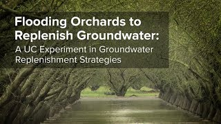 Download Flooding Orchards to Replenish Groundwater: A UC Experiment in Groundwater Replenishment Strategies Video