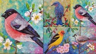 Download Songbird Mini Canvas Series LIVE Acrylic Painting Tutorial ″Bullfinch″ Video