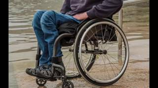 Download Swiss scientists experimenting with successful treatment for paralysis Video