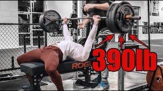 Download 390lb Bench Press & 455lb Squat | Important Updates Video