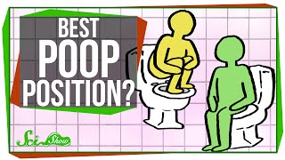 Download What's the Best Position for Pooping? Video