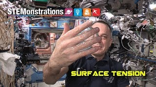 Download STEMonstrations: Surface Tension Video
