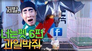 Download GOD-TUK - Bat (박쥐 합방) Video